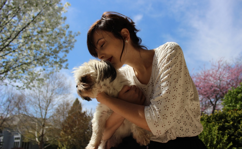 Why Every Girl Needs A Shih-Tzu (or dog in general)
