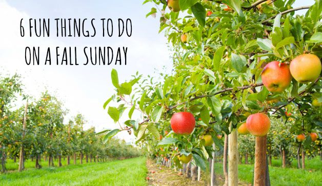Fun Fall Things To Do On Sunday (Instead Of Watching Football)
