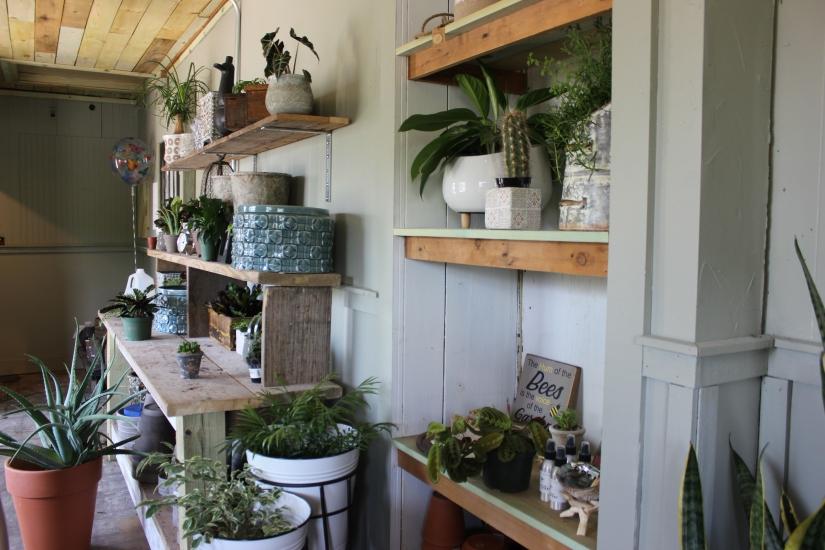 Local Day Out – Suburban Chicago GardenBoutique