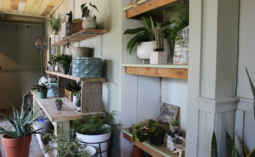 Local Day Out – Suburban Chicago Garden Boutique